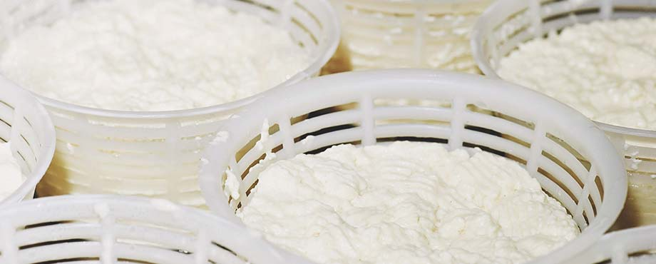 Italiensk ostkurs för två