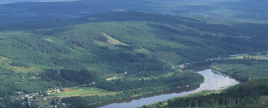 Naturupplevelse på timmerflotte i Värmland. En rogivande present!